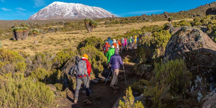 Kilimanjaro Climb and