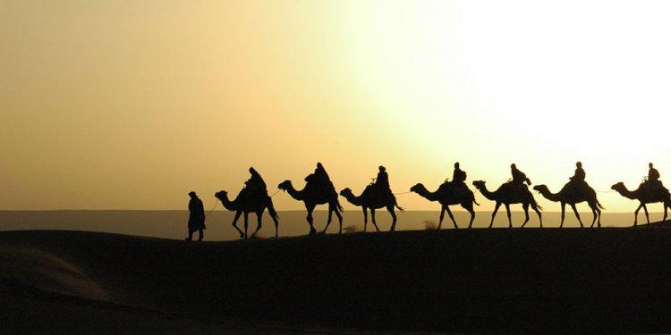 Holy Land Tours to Egypt