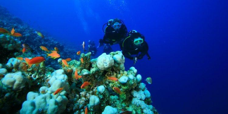 Scuba-dive-Hurghada-egypt