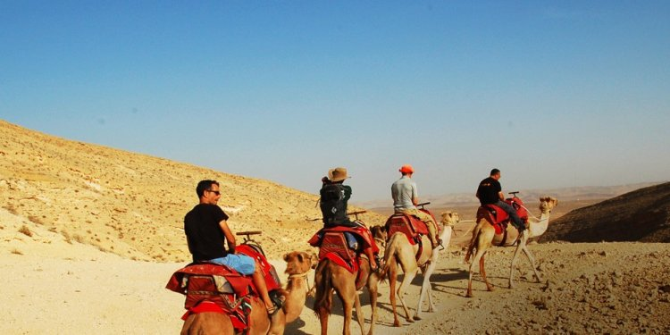 Packages Tours Egypt