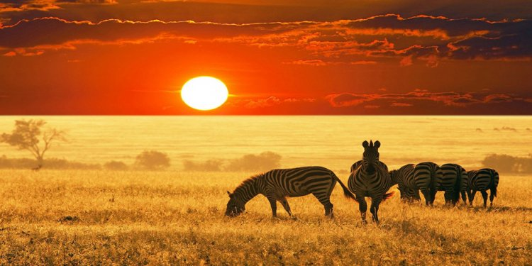 Africa travel deals