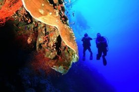 Egypt All Inclusive Diving vacations
